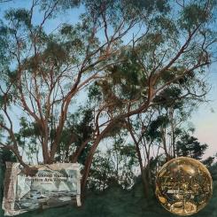 Song of Sorrow, 2015. 151 x 151cm Oil on linen